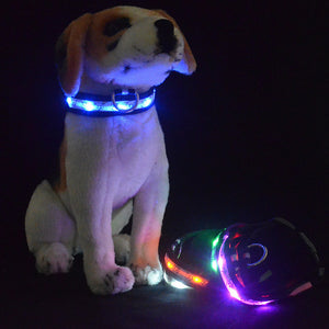 Night Safety LED Dogs Collar,Nylon Lights Flashing Glow In Dark Electric Pet Coolars,7Colors