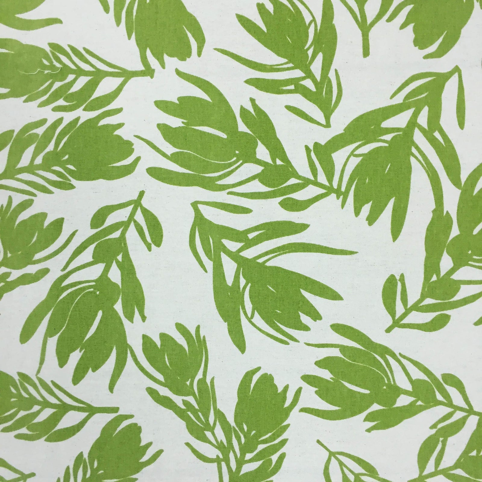 Conebush Fabric