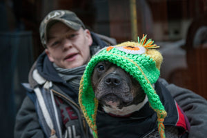 Street pups: how Britain's homeless dogs are helping the most vulnerable people