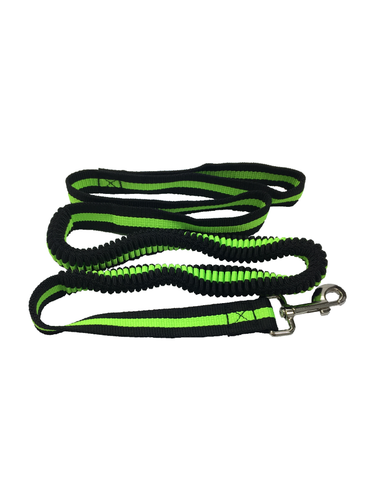 Dog Lead Bungee Stretch