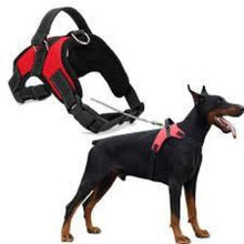 Dog Harness M/L Dogs