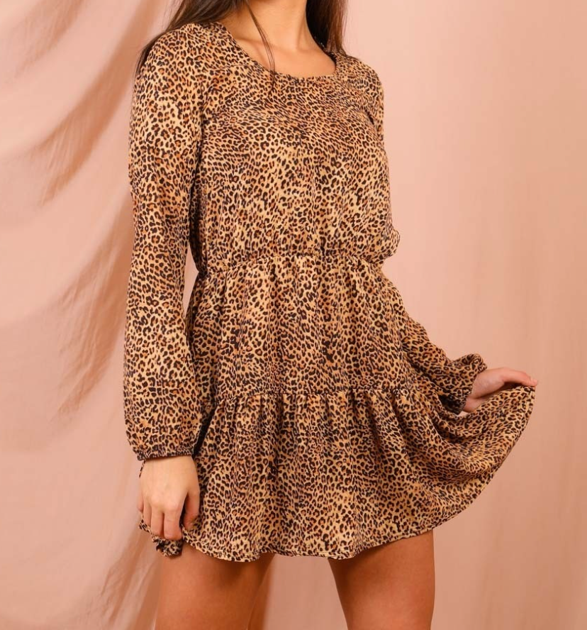Leopard Print Frill Mini Dress