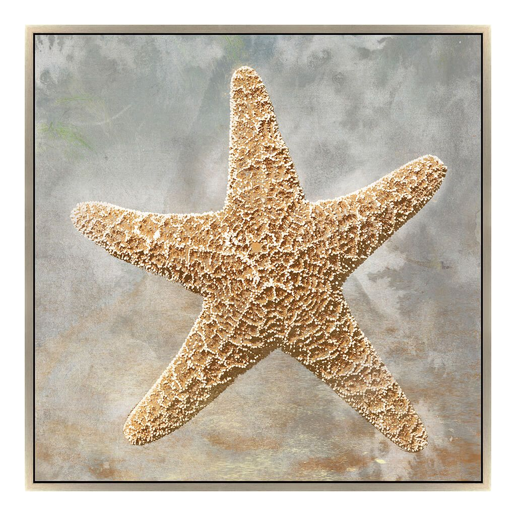 Golden Starfish Tx By Jason