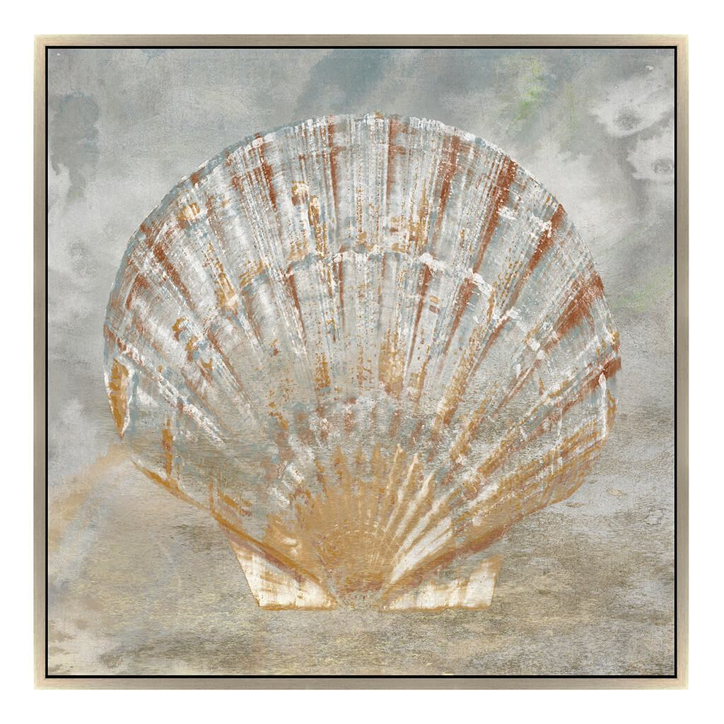 Golden Fan Shell Tx By Jason