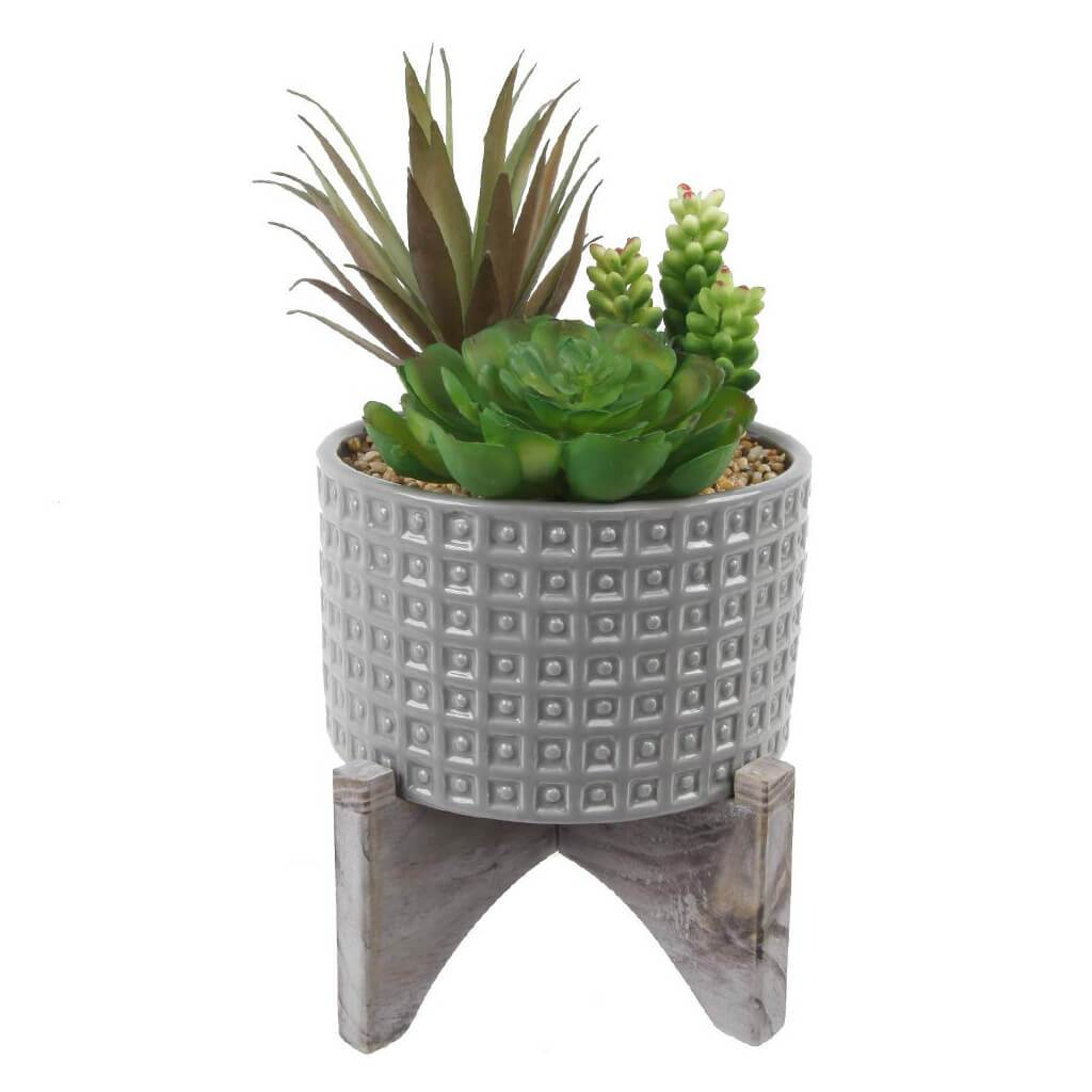 Succulent In Grey Pot W/Stand