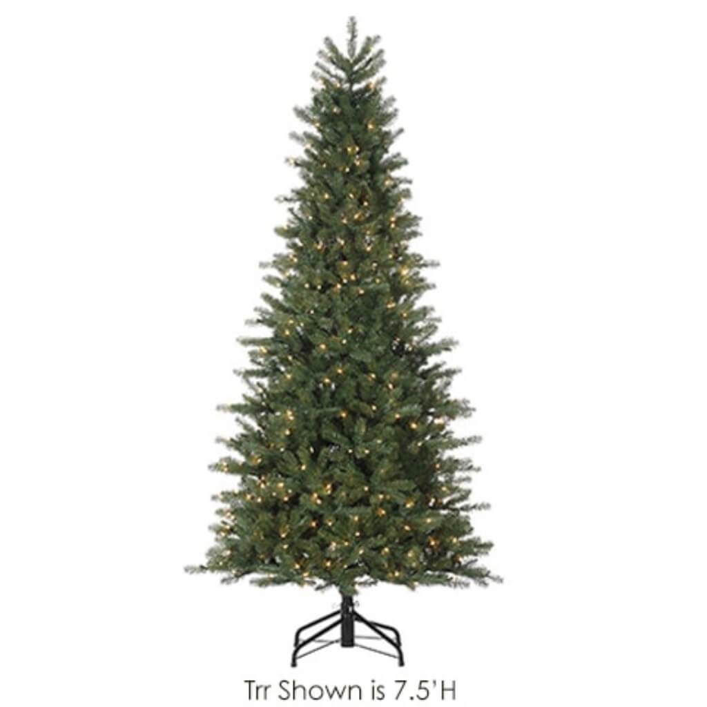 Federal Pine Tree x 645 with 200 Clear Lights on Metal Stand