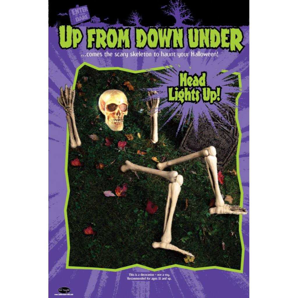 Up From Down Under Skeleton