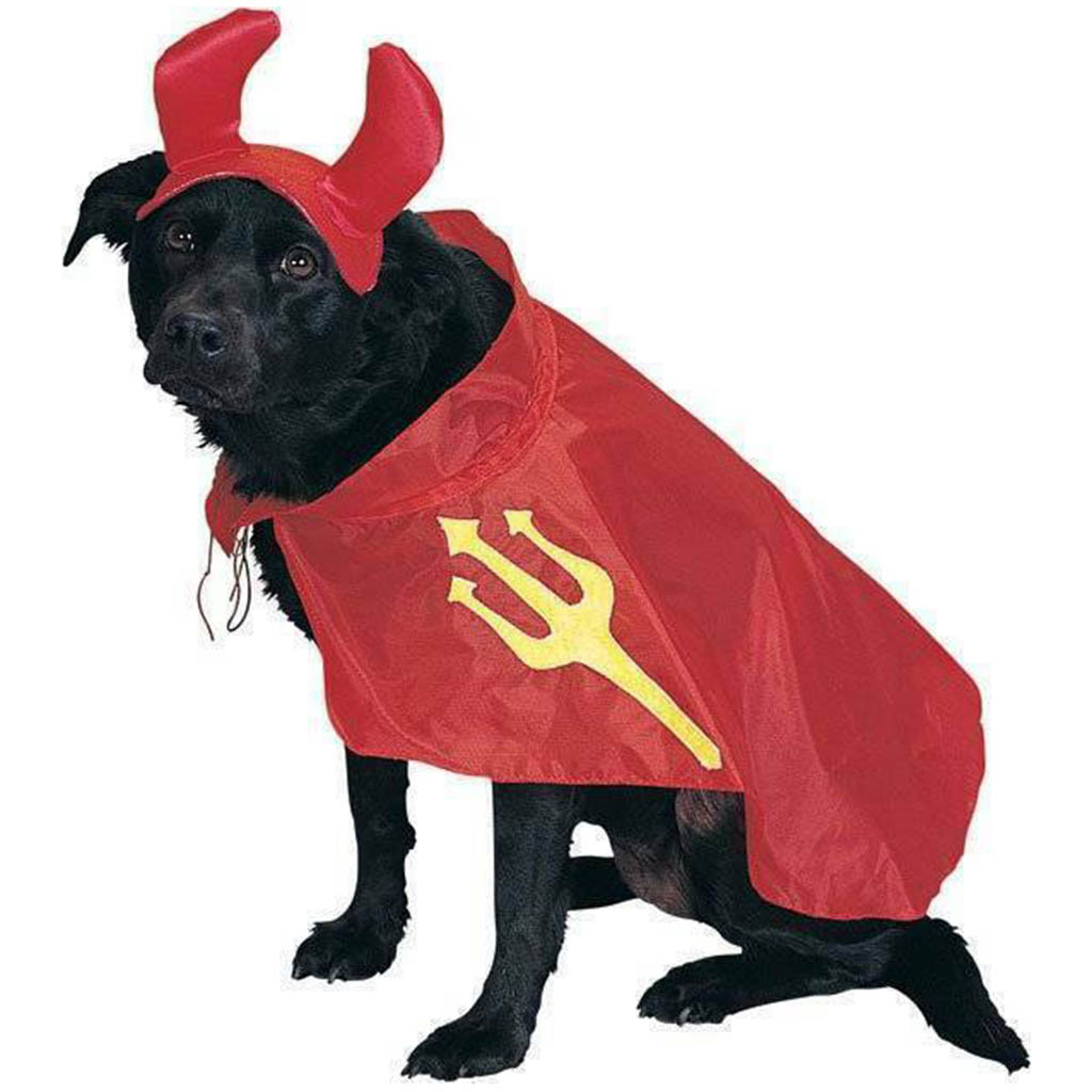 Devil Pet Costume