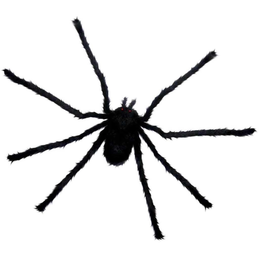 Spider Tarantula Hairy Furry  Black