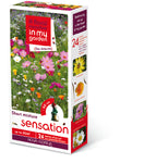 Sensation Seed Mix - BARGAIN BAG