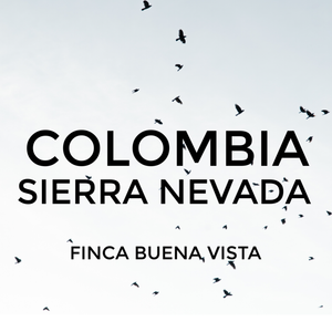 Colombia Sierra Nevada