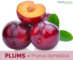 Plums (2 lbs.)