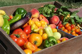 Summer Vegetable Box - Medium (Subscription)