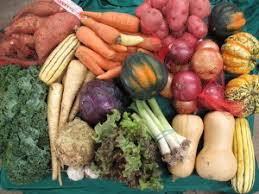 Winter/Spring Vegetable Box - Medium (Subscription)