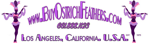 buy ostrich feathers amazon ostrich feathers including white ostrich feathers
