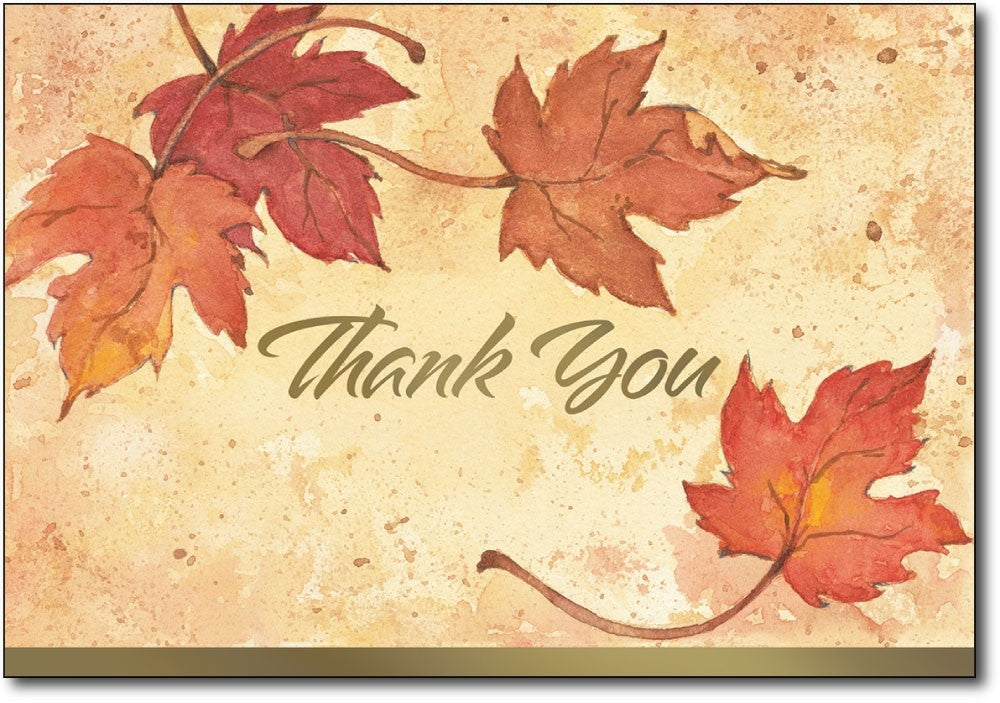 Thank You Card Sets - Fall Color Leaves - (50 Cards/Envelopes)