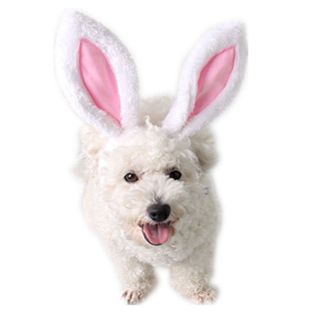 Rabbit Ears Headband for Pets