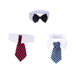 Pet Necktie And Bow Tie Collar Set