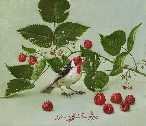 Bird with Raspberries