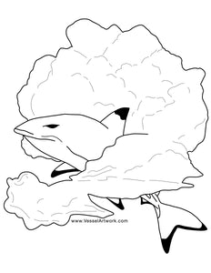 Black Tip Shark Colouring Page- Digital Download