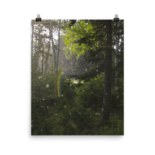 Load image into Gallery viewer, Rainbow in Forest Matte Print