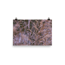Load image into Gallery viewer, Meadow Grass Matte Print