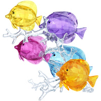 Swarovski Rainbow Fish Family 5223195