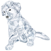 Swarovski Labrador Mother 5399004