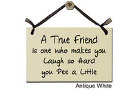 A True Friend is one who makes you Laugh so Hard you Pee a Little - Decorative Sign