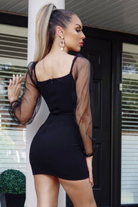Black Tie Up Detail Long Sheer Sleeve Bodycon Mini Dress