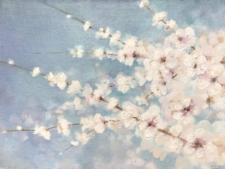 White Blossoms, 9