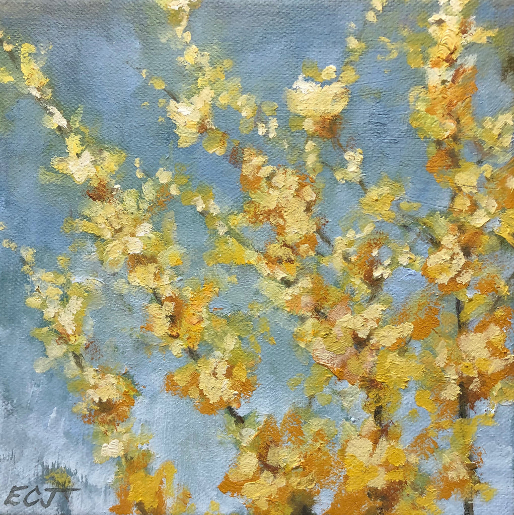 "Yellow Blossoms, 6""x6"""