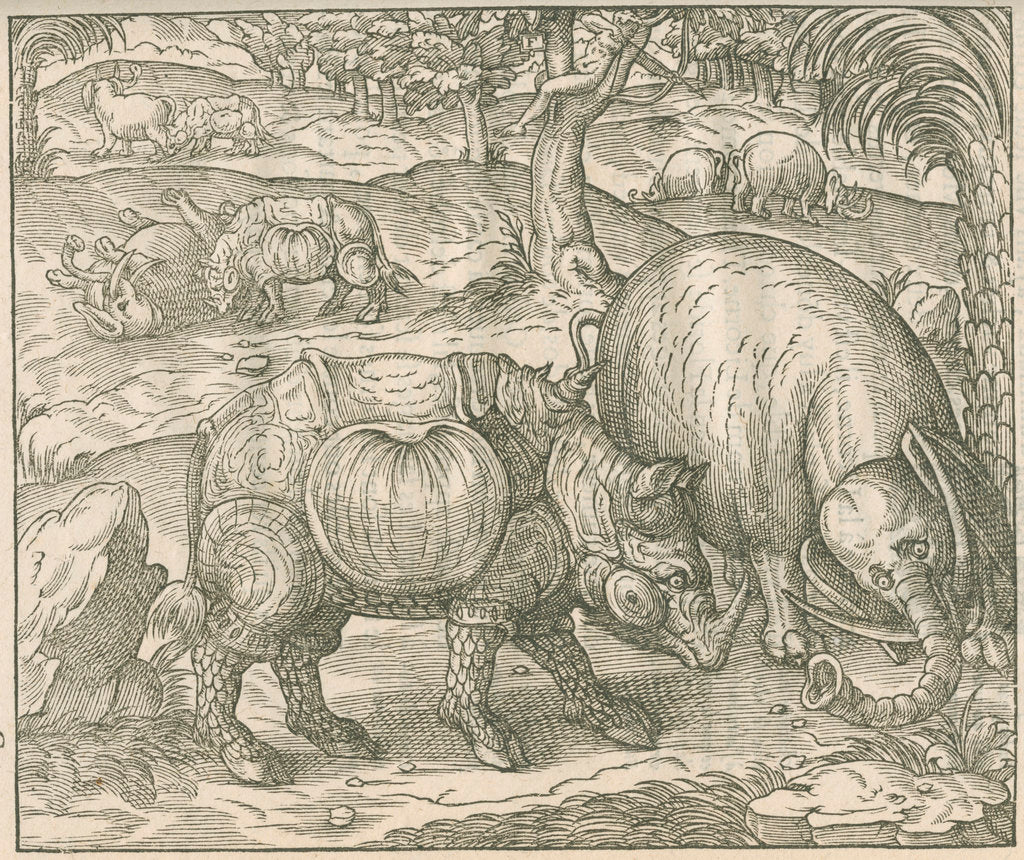 Detail of 'Figure du combat du Rhinoceros contre l'Elephant' by unknown