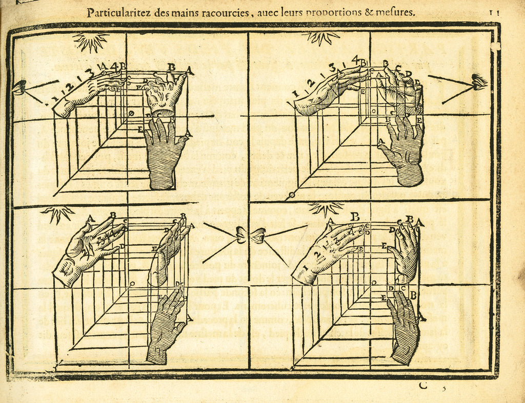 Movement and perspective of the hand by unknown