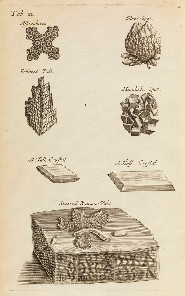 Detail of Stones and crystals in the Royal Society's Repository by Anonymous