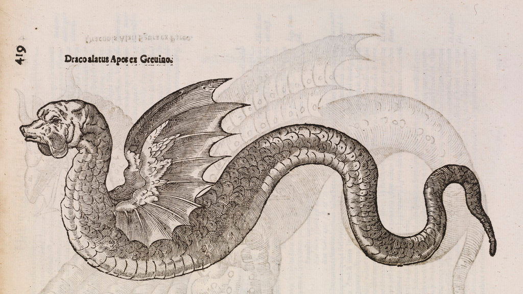 Detail of A 'winged dragon' by unknown