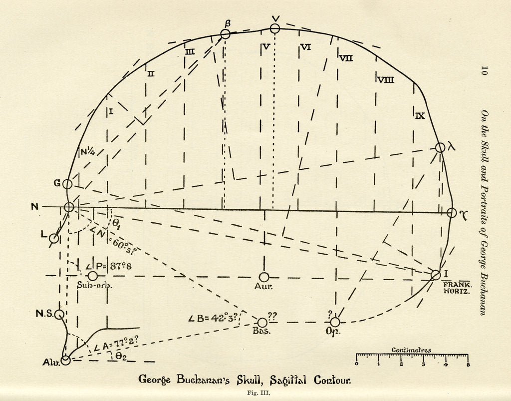 Detail of Measurements of George Buchanan's skull by unknown