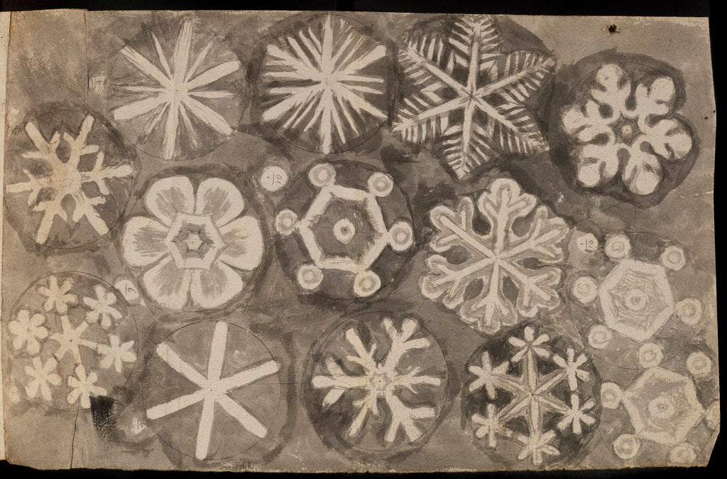 'Figures observ'd in snow' by Robert Hooke