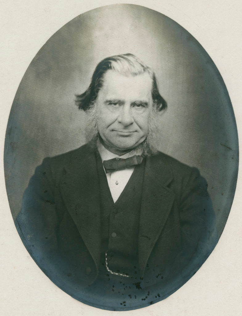 Detail of Portrait of Thomas Henry Huxley (1825-1895) by Anonymous