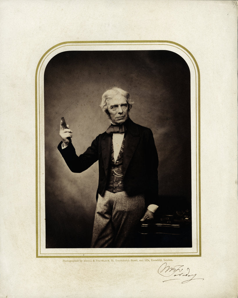 Portrait of Michael Faraday (1791-1867) by Maull & Polyblank