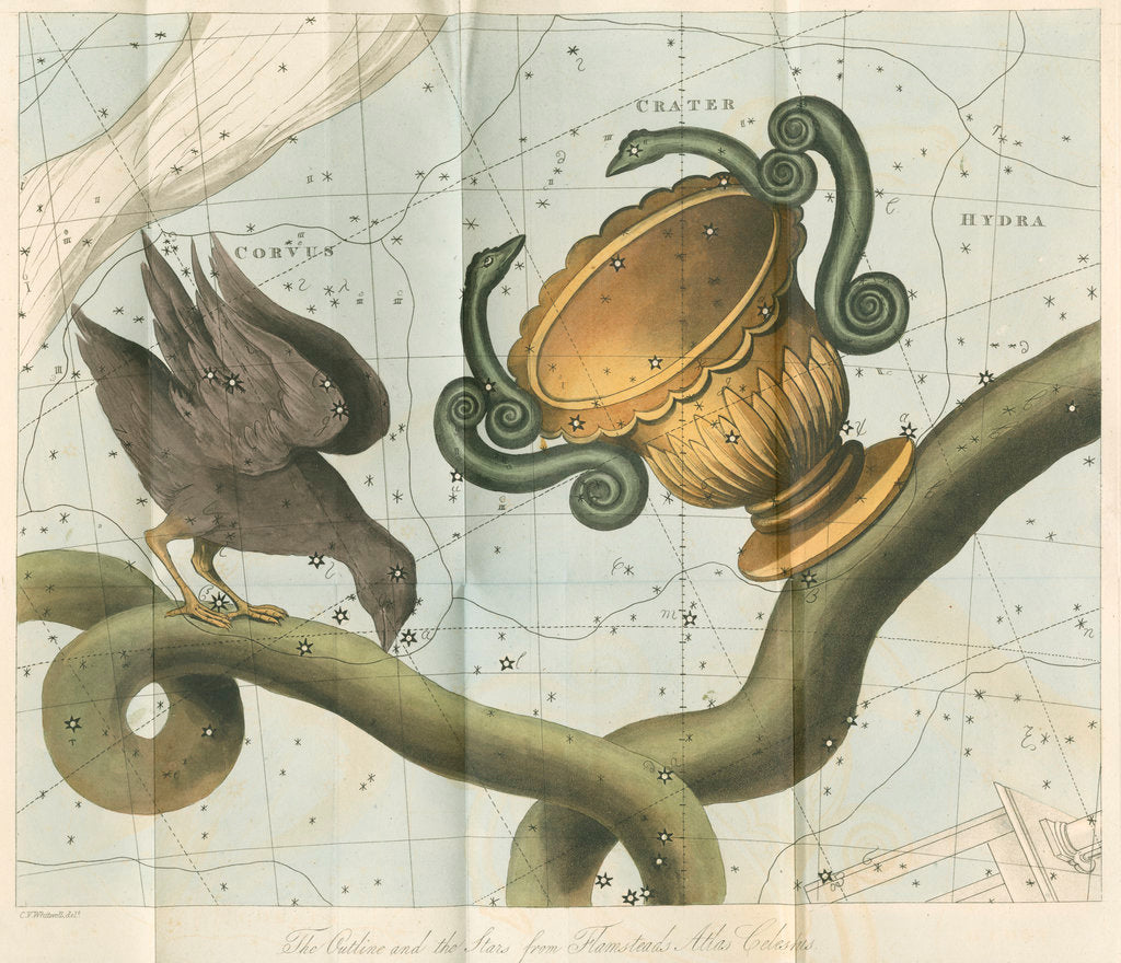 Detail of Constellations of Corvis, Crater and Hydra by Anonymous