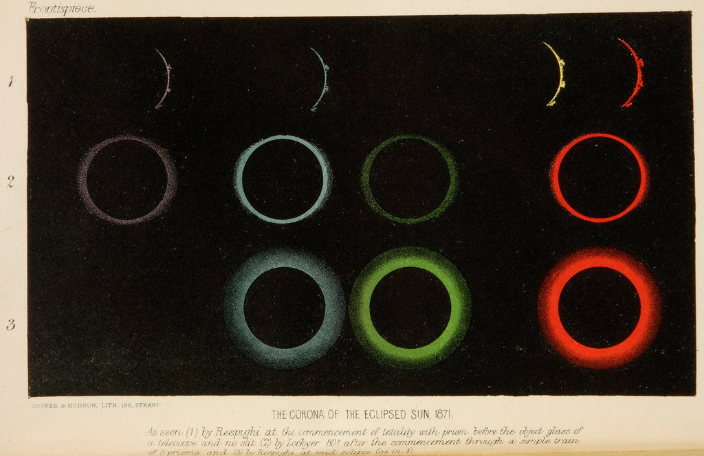 Detail of Corona of the eclipsed Sun, 1871 by Cooper & Hodson
