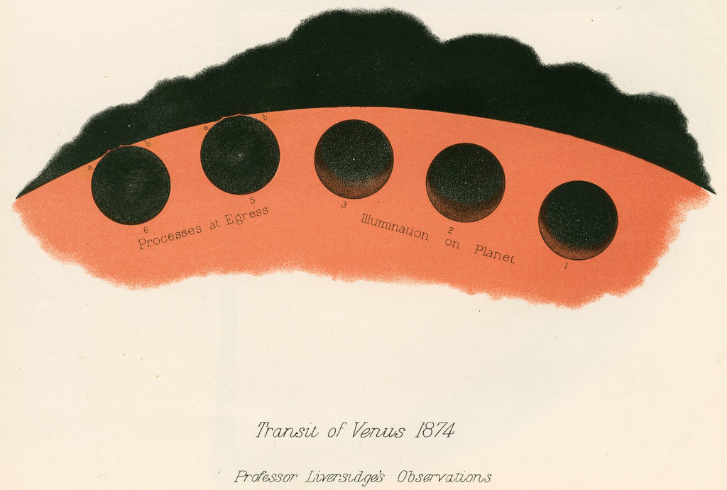 Detail of Professor Liversidge's observations of the transit of Venus by Anonymous