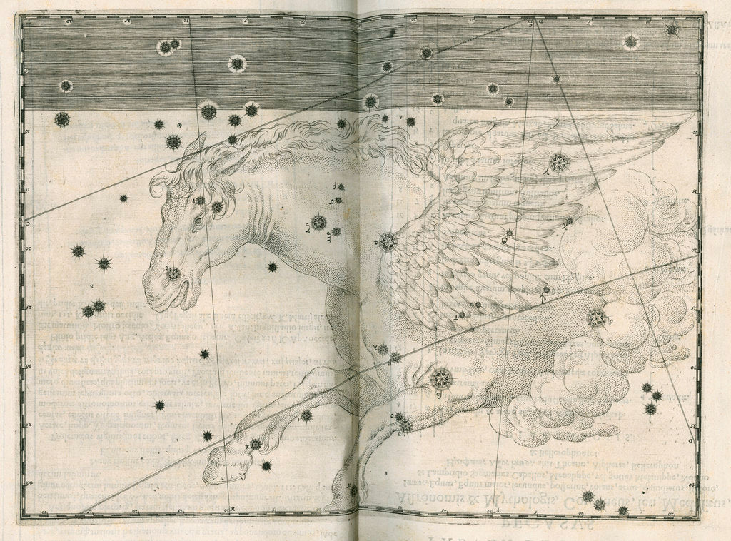 Detail of Constellation of Pegasus by Alexander Mair