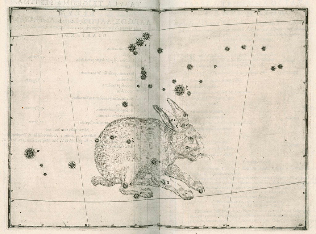 Detail of Constellation of Lepus by Alexander Mair