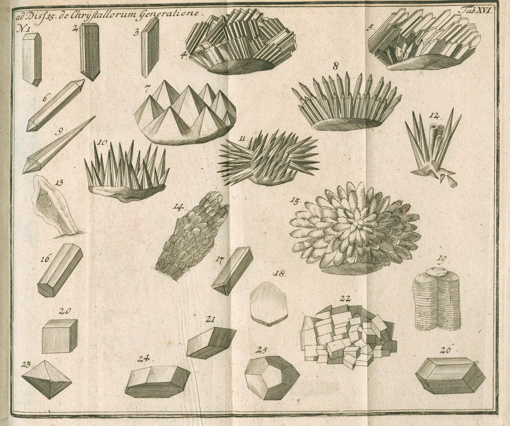Detail of Microscopical observations of crystals from Linnaeus's 'Academic delights' by Anonymous