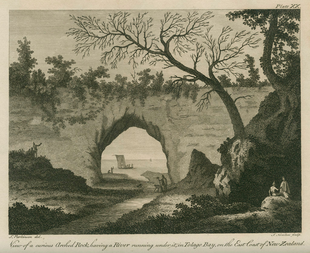 Detail of '...curious arched Rock, having a River running under it, in Tolago Bay.' by James Newton