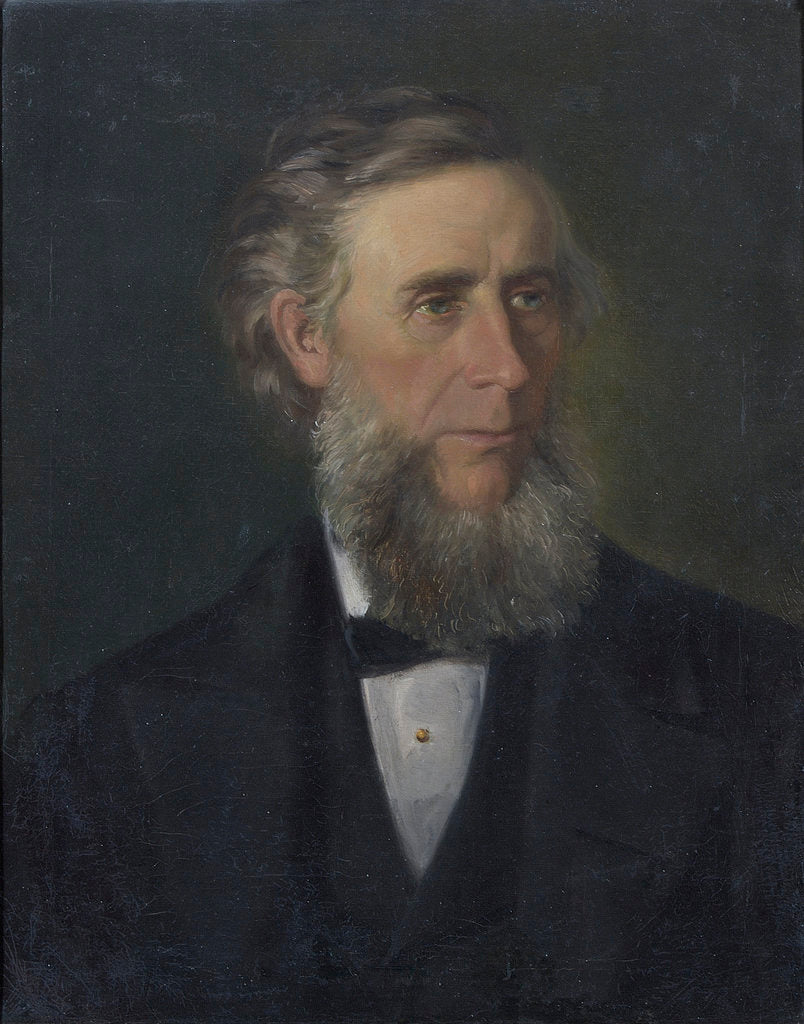 Detail of Portrait of John Tyndall (1820-1893) by Victor Zippenfeld