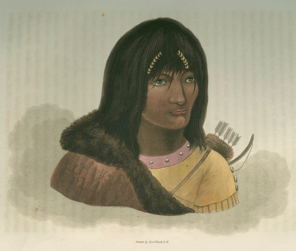 Detail of 'Portrait of a Stone Indian' by Edward Francis Finden