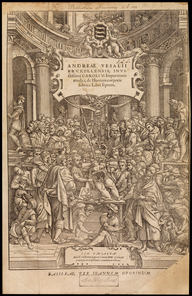 Detail of Title page of 'De humani corporis fabrica' by Studio of Titian